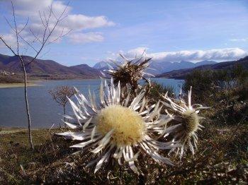 Panorama sul lago di Campostosto e con il Gran Sasso sullo sfondo (27505 bytes)
