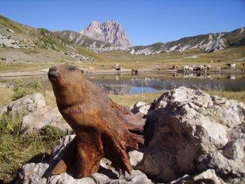 scultura Marmotta (19030 bytes)