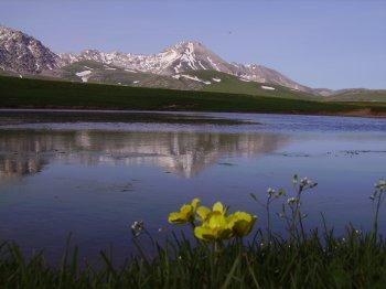 Lago Racollo al Gran Sasso (15821 bytes)