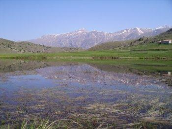 Lago di Filetto in estate, con il Pizzo Cefalone sullo sfondo (21607 bytes)