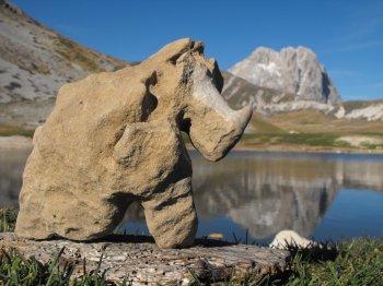 Un rinoceronte al Gran Sasso (24621 bytes)